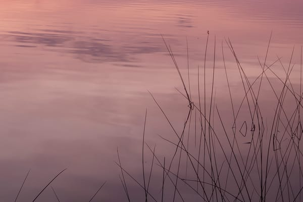 Water Ballet by Jeremy Simonson