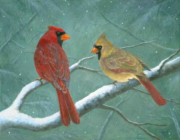 male-female-cardinals,