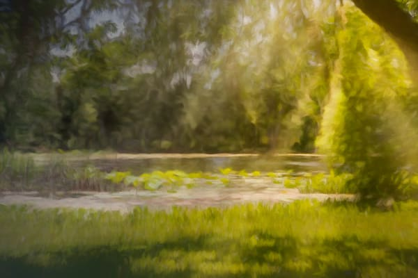 Texas Pond On A Sunny Afternoon   Digital Painted Photograph Photography Art | Beth Sheridan Photography