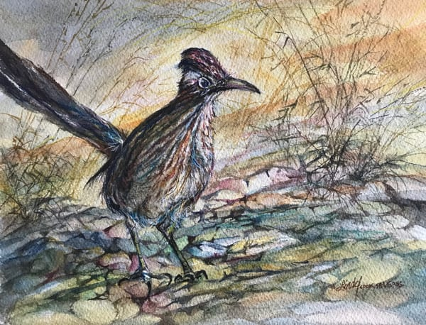 Lindy Cook Severns Art | Rock Runner, original watercolor