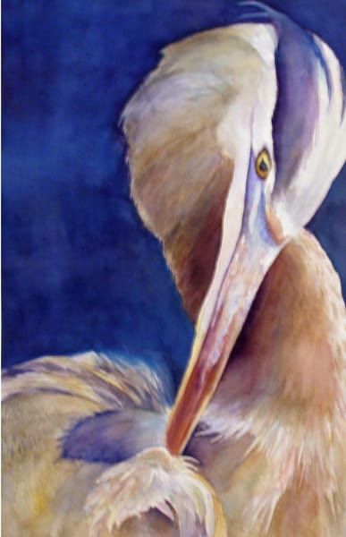 Heron Preening, From an Original Watercolor Painting