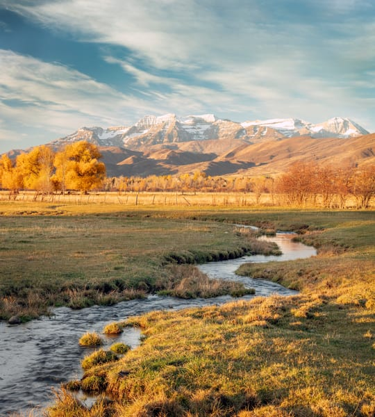 Heber Valley Late Autumn Morning