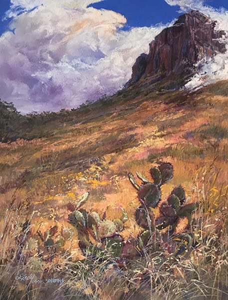Big Bend Collection