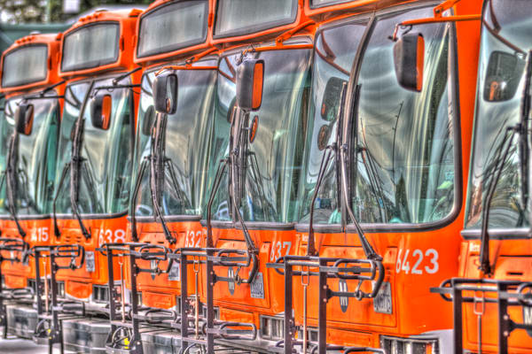 Buses Photography Art | Michael Scott Adams Photography