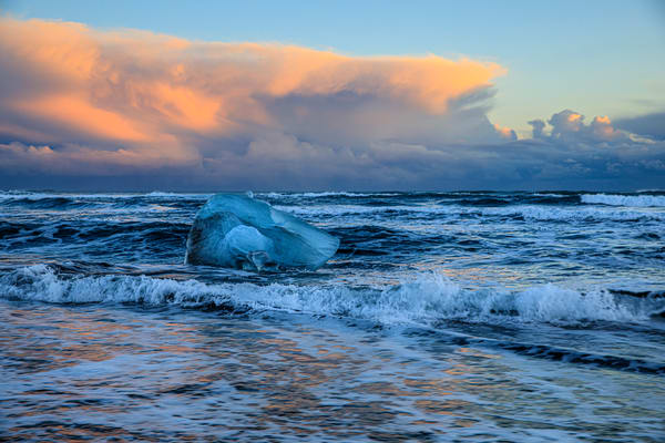 Ice Bird Wide Shot Photography Art | Michael Scott Adams Photography