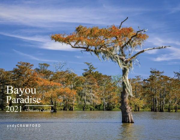 2021 Bayou Paradise 12-month calendar