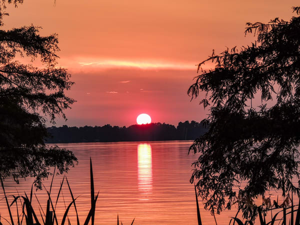 Reelfooot Lake At Sunset Photography Art | N2 the Woods Photography - Nature and Wildlife Artwork