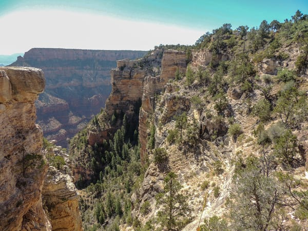 Grand Canyon North Rim 1 Photography Art | N2 the Woods Photography