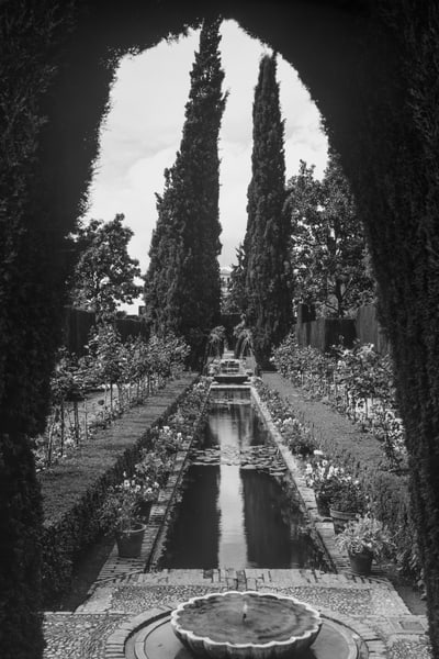 Alhambra and Generalife, Black and White, Photograph