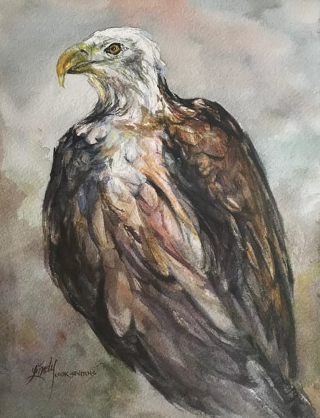 Lindy Cook Severns Art | Ruffled With Pride, original watercolor