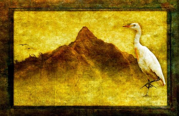 Egret and Pali
