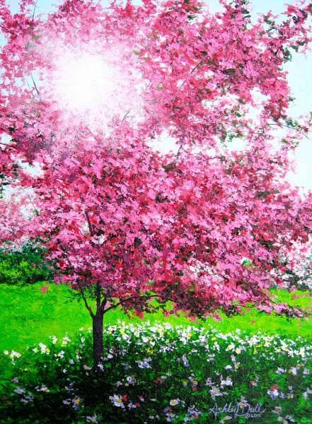 Spring Inspired Landcape Art and Paintings for Sale.