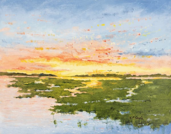 Splendid Sunrise  Art | Chris Doyle Fine Arts