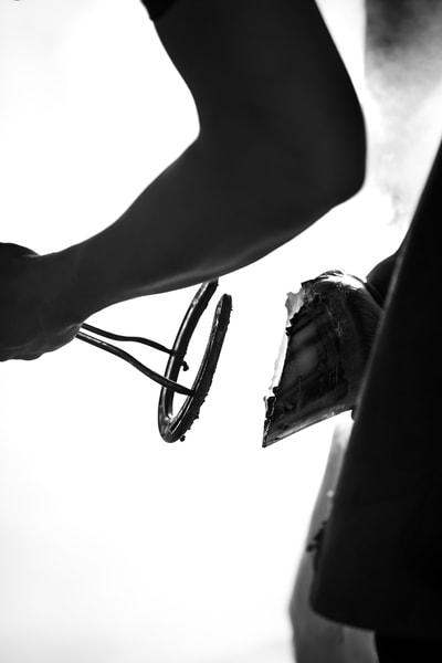 Shoeing Photography Art | Sydney Croasmun Photography
