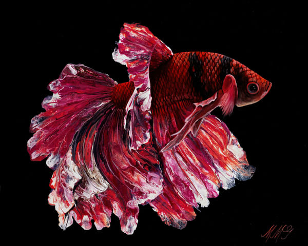 Fuego Betta | Original Mixed Media Painting Art | MMG Art Studio | Fine Art Colorado Gallery