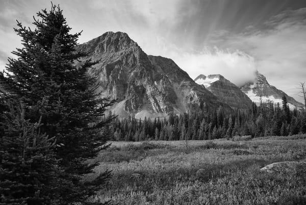 Mountain Meadow Photography Art | Namaste Photography