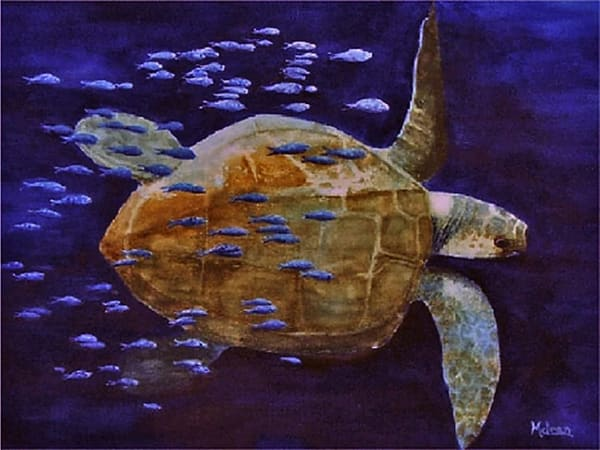 Sea Turtle with Friends , From an Original Oil Painting