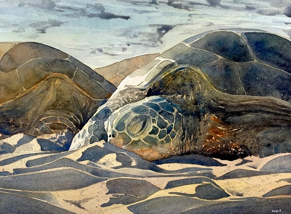 watercolor, seaturtle, maui, art, hawaii