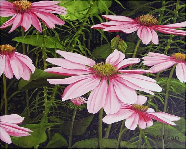 In the Pink, From an Original Oil Painting
