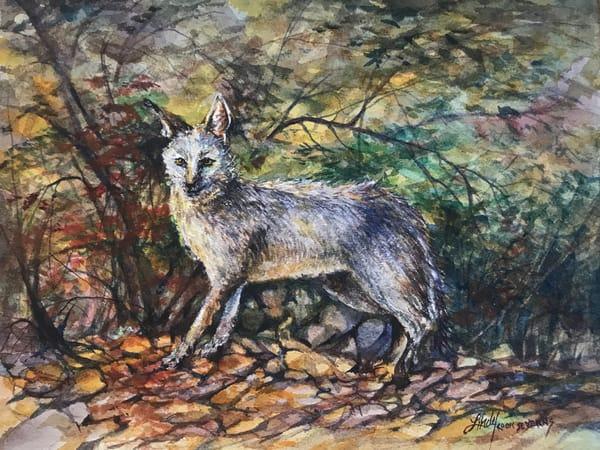 Lindy Cook Severns Art | Fox Fall, original watercolor