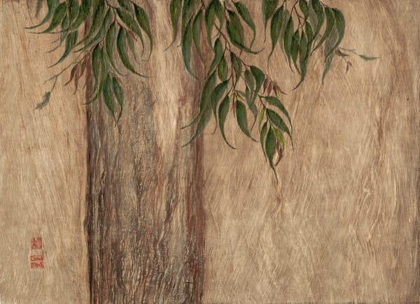 Eucalyptus On Bark Art | donnadacuti