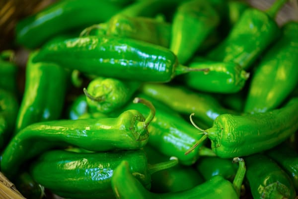Hot Green Chilis | El Paso Art Photography