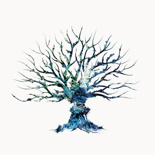 Tree 1 Photography Art | Inga Pae