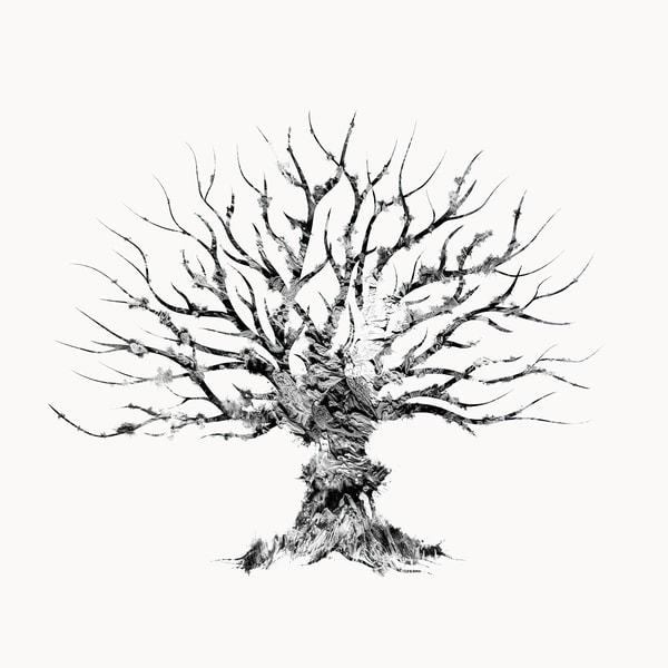 Tree 2 Photography Art | Inga Pae