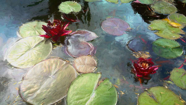 Black Princess Water Lilies Art | smalljoysstudio