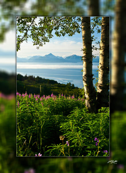 Alaska   Homer 3 D Photography Art | Whispering Impressions