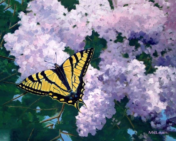 Lilac Infusion, From an Original Oil Painting