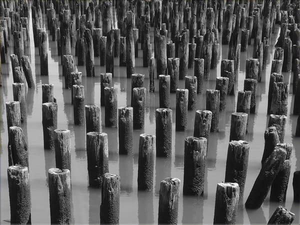 Hudson River Sentinels   B/W Art | Allan Gorman Fine Art
