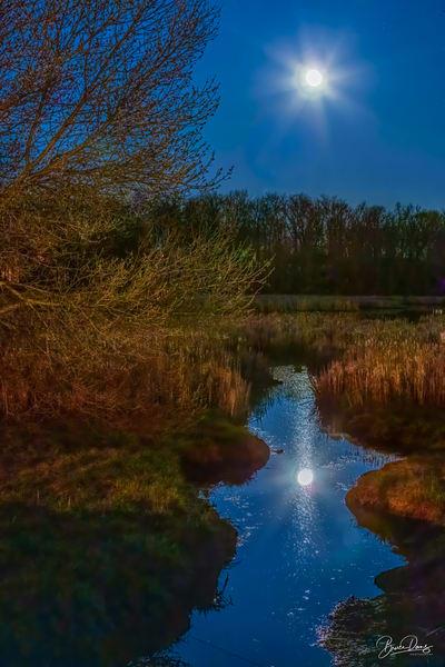 Moonlight At The Gluckenberg Sturm Preserve Art | brucedanz
