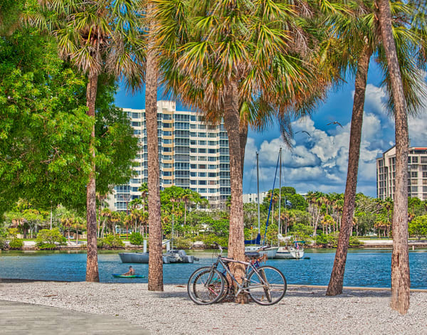Bikes In Park Photography Art   It's Your World - Enjoy!