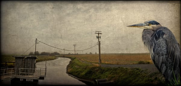 Lord Of The Landscape   Limited Edition Prints Photography Art | Doug Landreth Photography