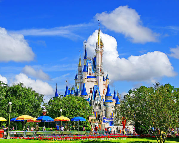 Cinderella Castle from Crystal Palace - Disney Wall Mural