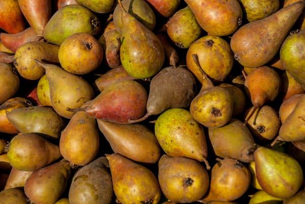 pears ecuador