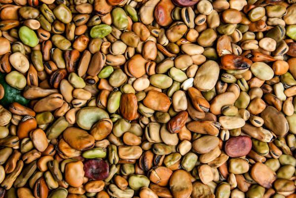 Beans ecuador