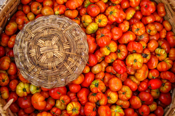 Tomatoes and basket