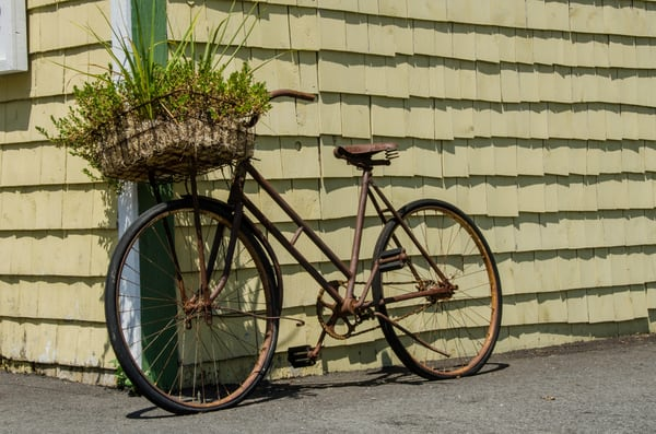 Basket plant bike