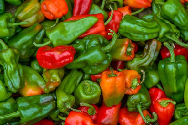 Nicaragua peppers