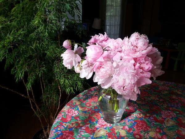 Peonies In A Glass Vase Art | smalljoysstudio