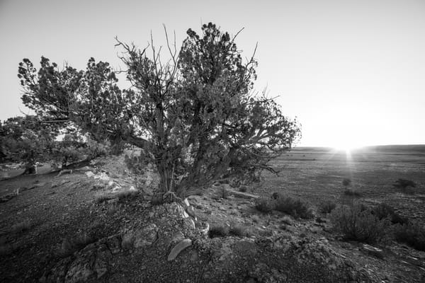 Desert Sunrise Photography Art | Andy Crawford Photography - Fine-art photography