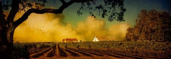 Harvest Light   Limited Edition Prints Photography Art | Doug Landreth Photography