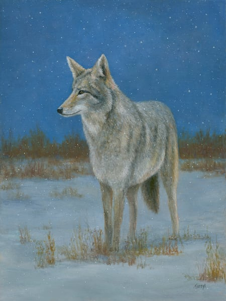 *Ghost Of The Prairie Art | Tarryl Fine Art