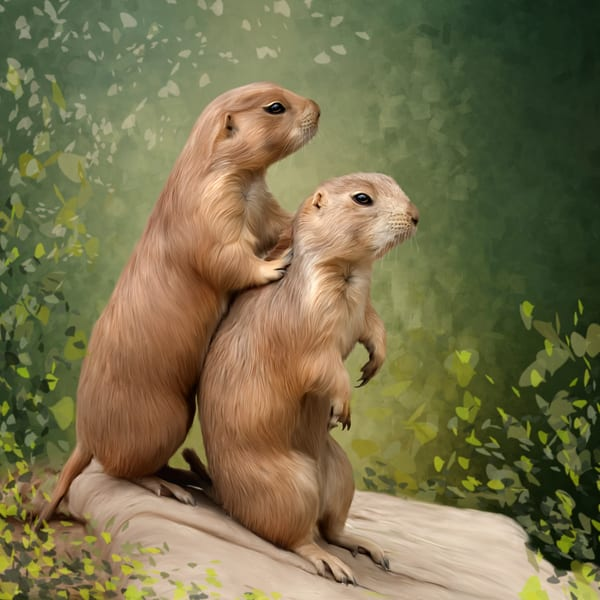 """""""Buddies""""/ Shop fine art paintings and photography by An Artist's View Photography"""