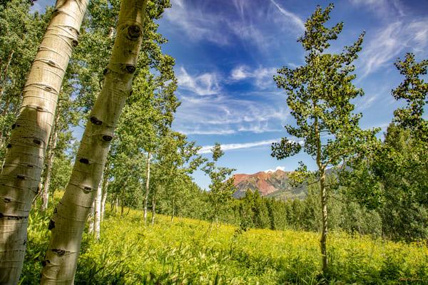 Aspen Mountains  6814 C S19  Photography Art | Koral Martin Healthcare Art