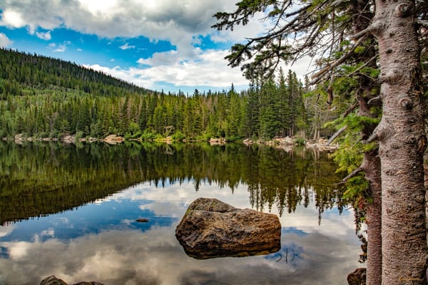 Bear Lake Rmnp  7919 Cb S19  Photography Art | Koral Martin Healthcare Art