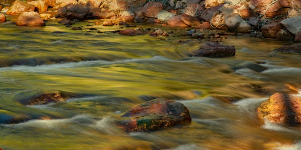 Golden Flow 7971 Pano2   Photography Art | Koral Martin Healthcare Art
