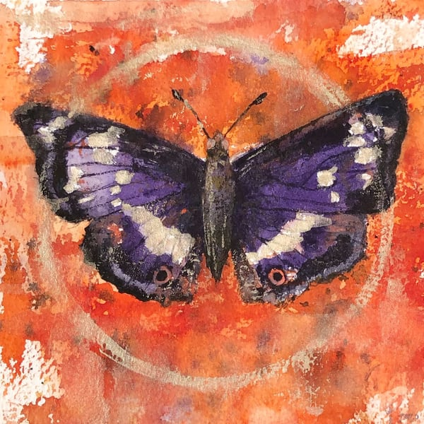 Purple Emperor Art | Marian Pham Art LLC